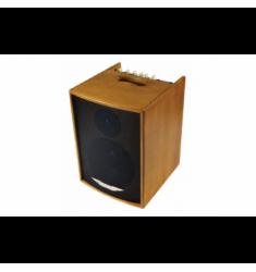 Ashdown AA-100 Wooden Acoustic Guitar Amplifier Combo