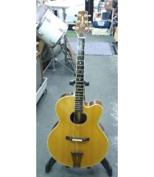 Free Shipping Takamine PT-015E Archedtop Electric Acoustic guitar Used #02296399