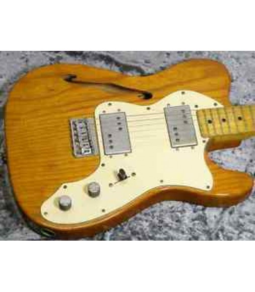 【VINTAGE】 Fender Telecaster Thinline '75 w/ohsc FREESHIPPING from JAPAN