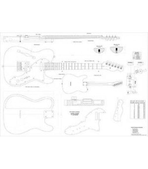 Guitar Plans Fender®Telecaster 69 Thinline Deluxe 1 to1