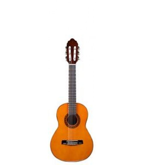 Valencia cg160 standard series 1 2 size classical guitar for Luthier valencia