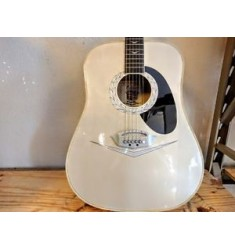 '08 Rare Esteban Cadillac Acoustic Guitar (used)
