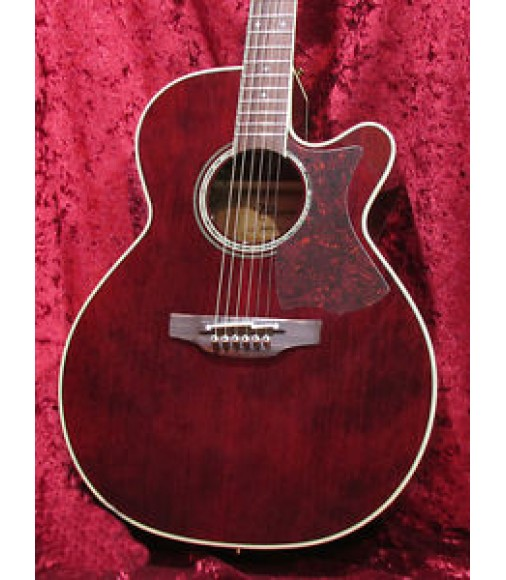 Takamine DMP551C WR Acoustic Guitar Free Shipping