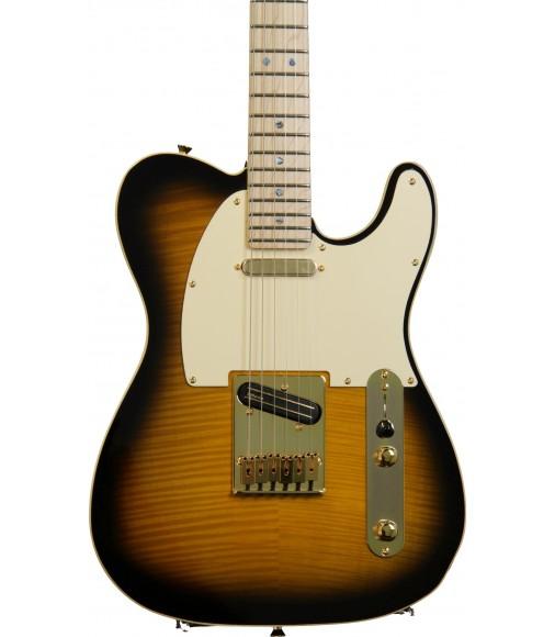 Artist Series, 2 Tone Sunburst  Fender Richie Kotzen Telecaster