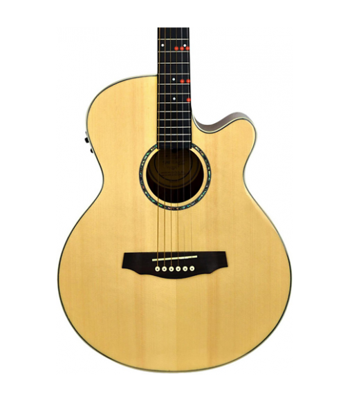 Fretlight FG-529 Pro Acoustic-Electric Guitar with Built-In Lighted Learning System Natural
