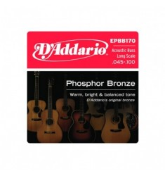 D'Addario EPBB170 Bronze Acoustic Bass Strings, Long Scale, 45-100