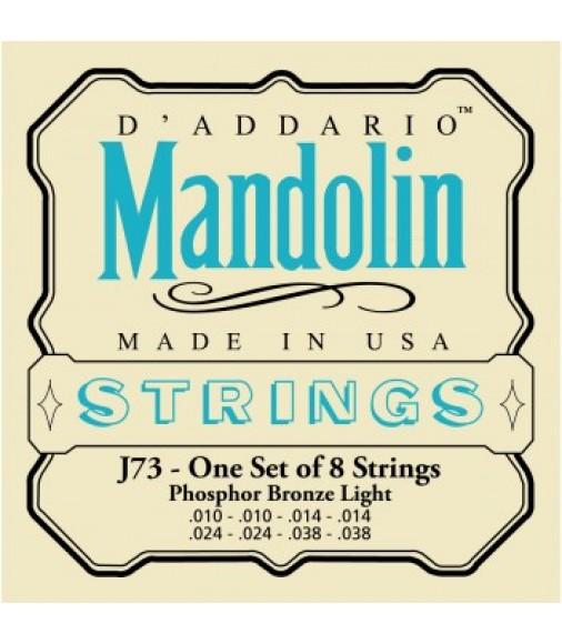D/'Addario EJ73 Mandolin Phosphor Bronze Light J73 Strings 10-38