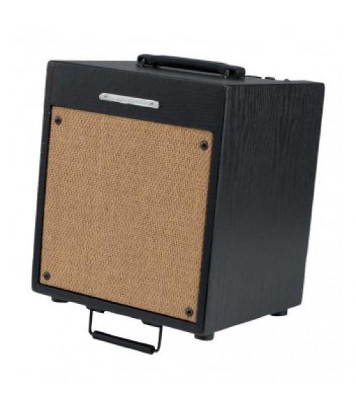 Ibanez Troubadour Acoustic Guitar Amplifier Combo